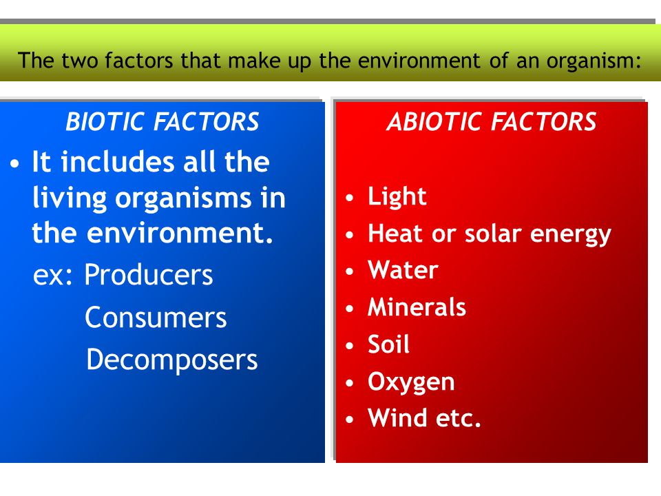 The two factors that make up the environment of an organism: BIOTIC FACTORS It includes all the living organisms in the environment. ex: Producers Con