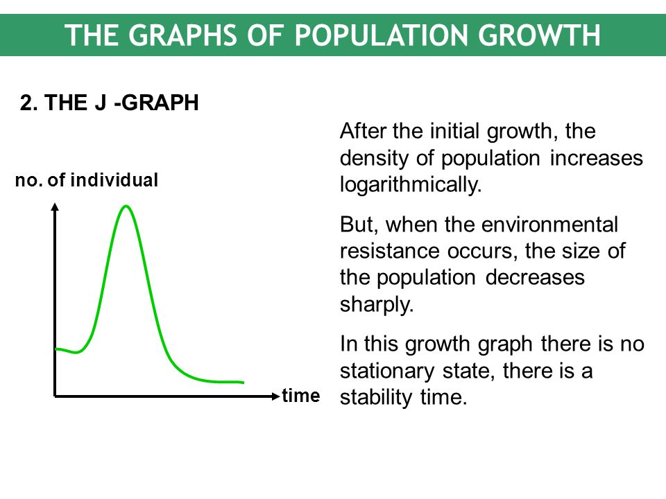 THE GRAPHS OF POPULATION GROWTH 2. THE J -GRAPH time no. of individual After the initial growth, the density of population increases logarithmically.