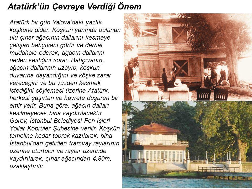 Atatürk bir gün Yalova'daki yazlık köşküne gider.