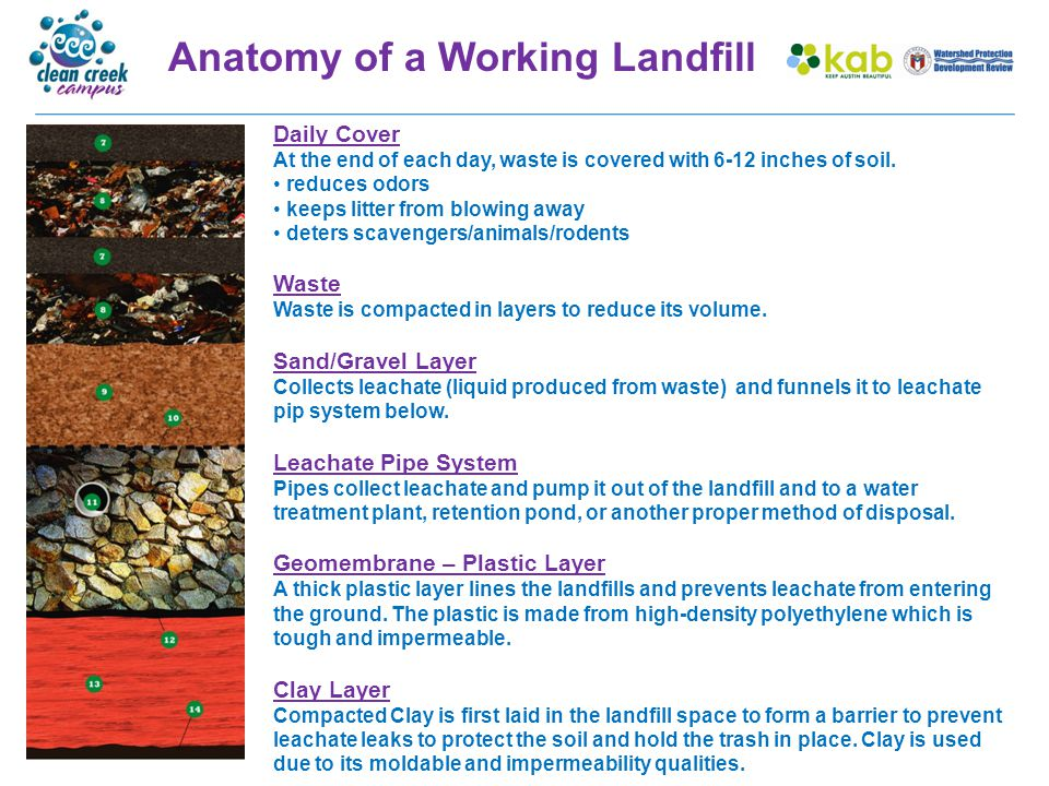 Anatomy of a Closed Landfill Protective Cover Cover Vegetation – when landfills are full they are covered with native grasses and shrubs and used as recreation areas.