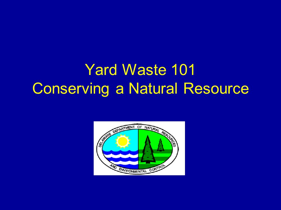 2 What is Yard Waste.
