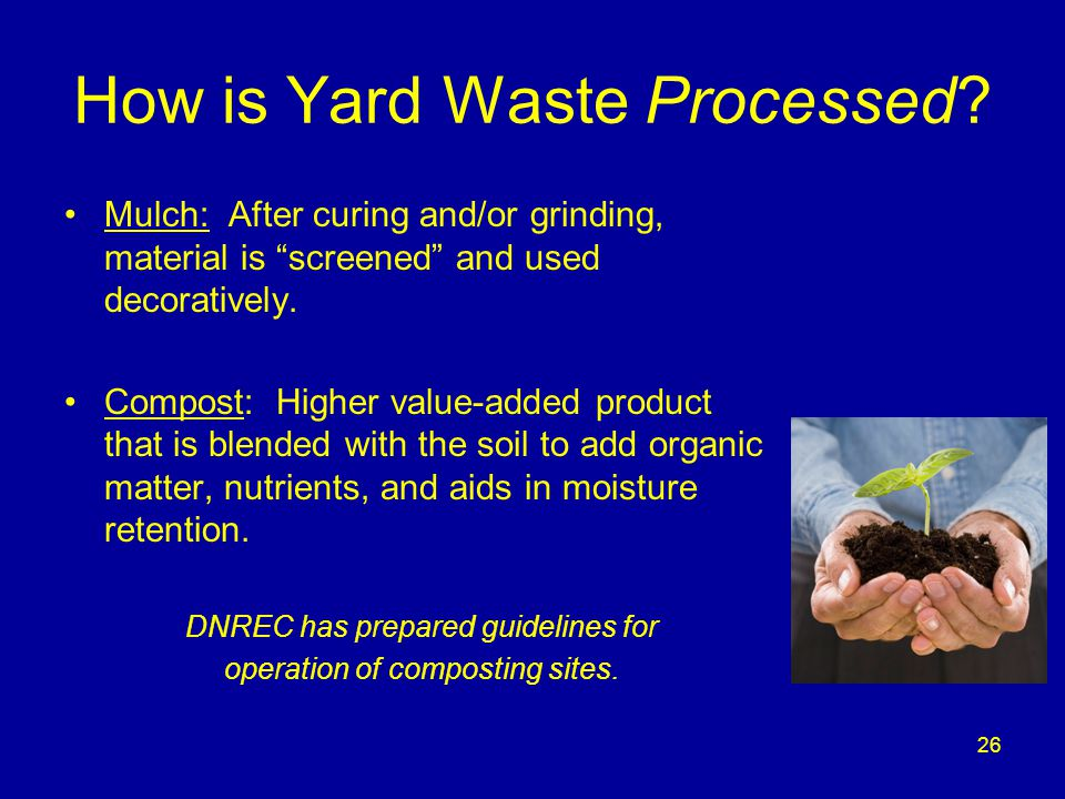 """26 How is Yard Waste Processed? Mulch: After curing and/or grinding, material is """"screened"""" and used decoratively. Compost: Higher value-added product"""