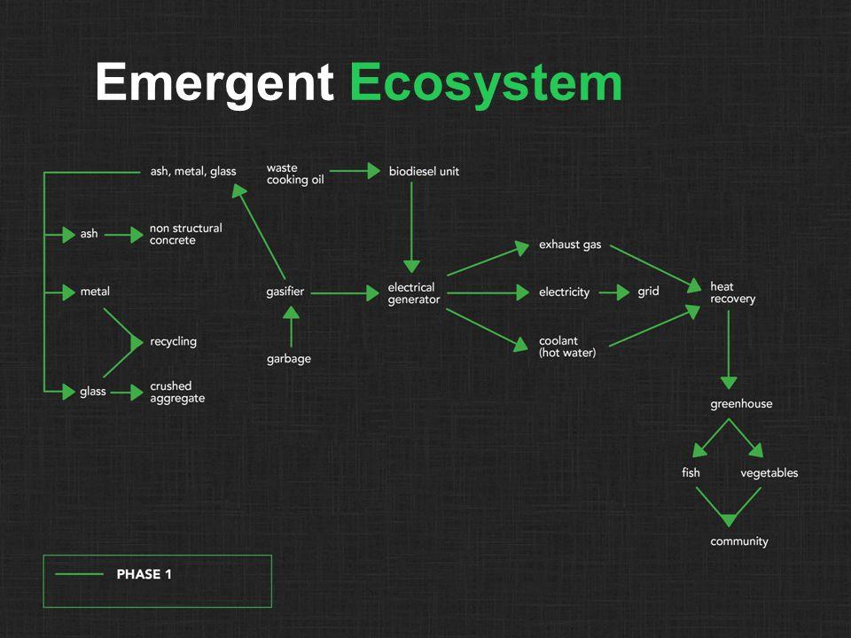 Emergent Ecosystem