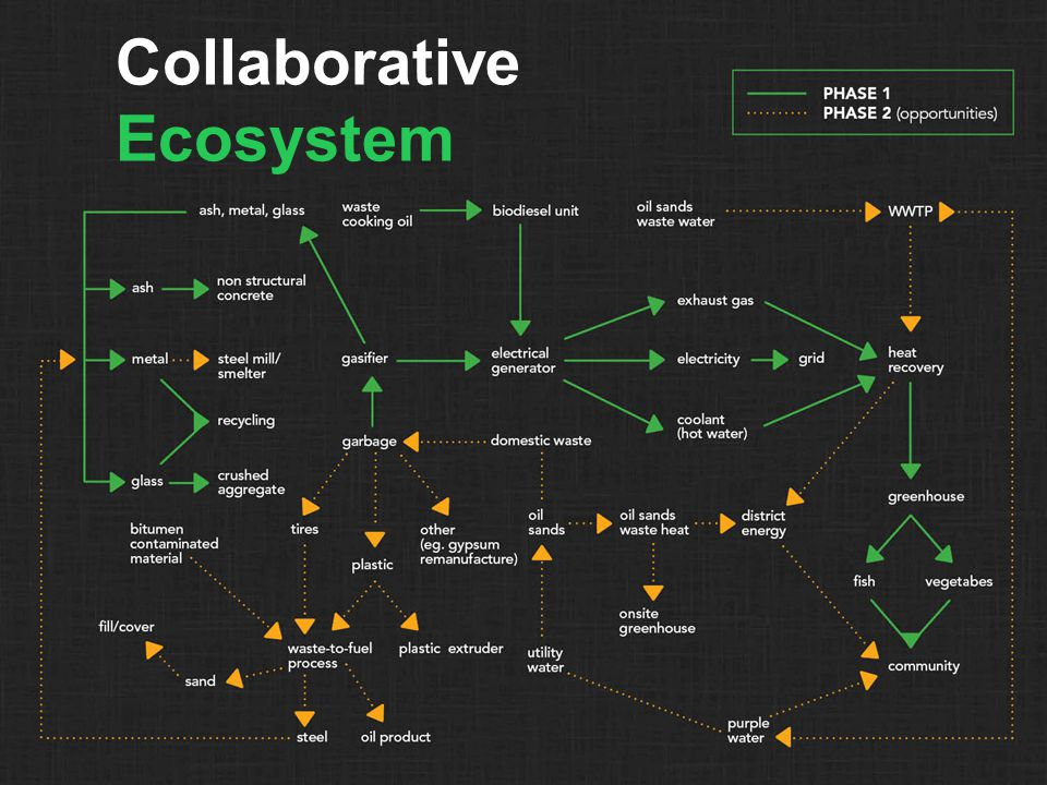 Collaborative Ecosystem