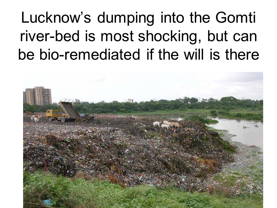 8 Lucknow's dumping into the Gomti river-bed is most shocking, but can be bio-remediated if the will is there