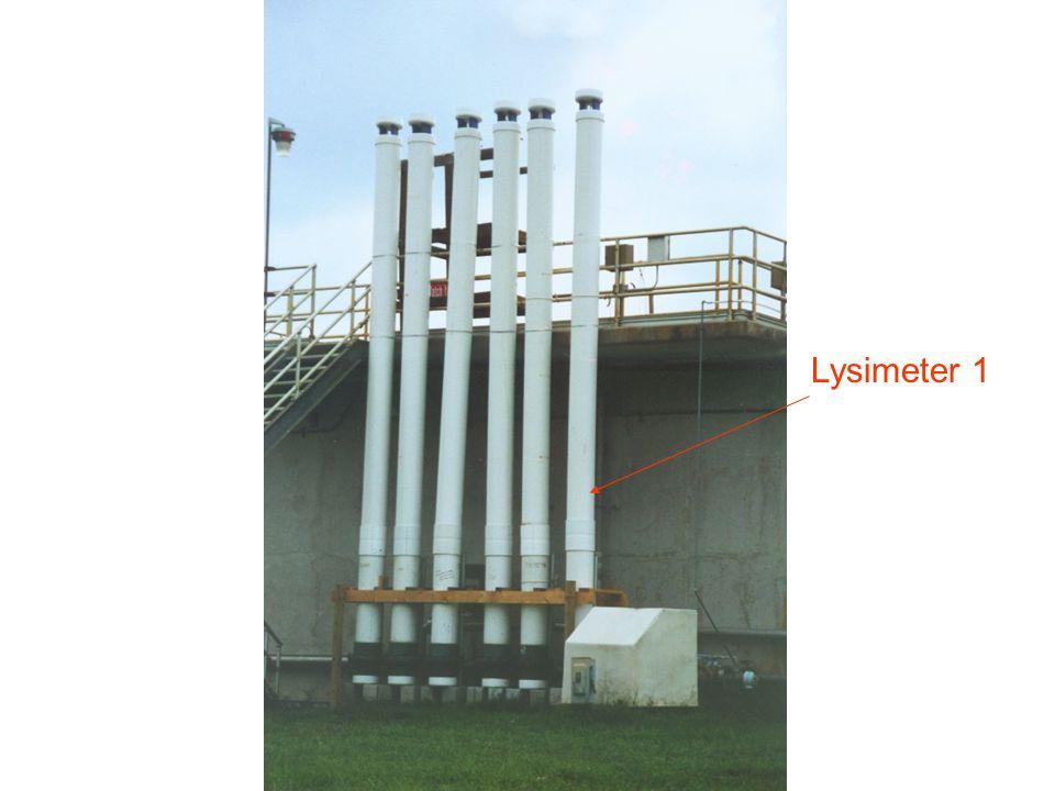 Lysimeter 1