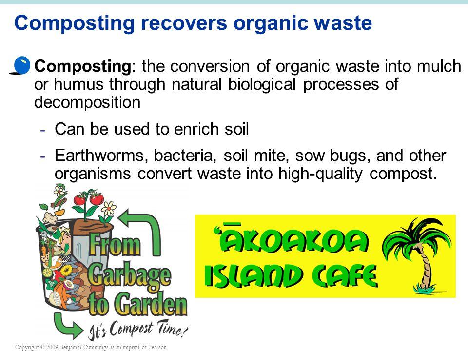 Copyright © 2009 Benjamin Cummings is an imprint of Pearson Composting recovers organic waste Composting: the conversion of organic waste into mulch or humus through natural biological processes of decomposition - Can be used to enrich soil - Earthworms, bacteria, soil mite, sow bugs, and other organisms convert waste into high-quality compost.