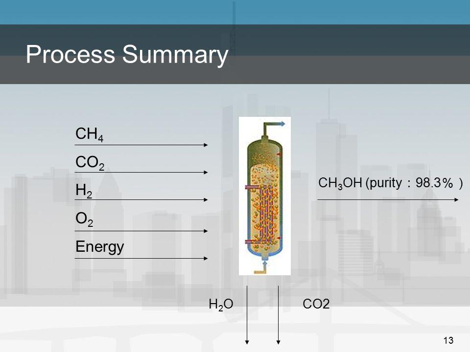 13 Process Summary CH 4 CO 2 H 2 O 2 Energy H2OH2OCO2 CH 3 OH (purity : 98.3 %)