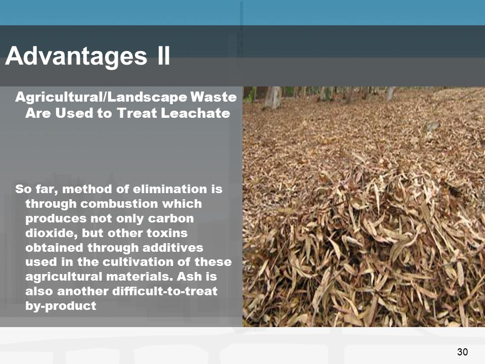 30 Agricultural/Landscape Waste Are Used to Treat Leachate So far, method of elimination is through combustion which produces not only carbon dioxide,