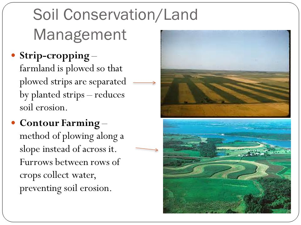 Soil Conservation/Land Management Strip-cropping – farmland is plowed so that plowed strips are separated by planted strips – reduces soil erosion.
