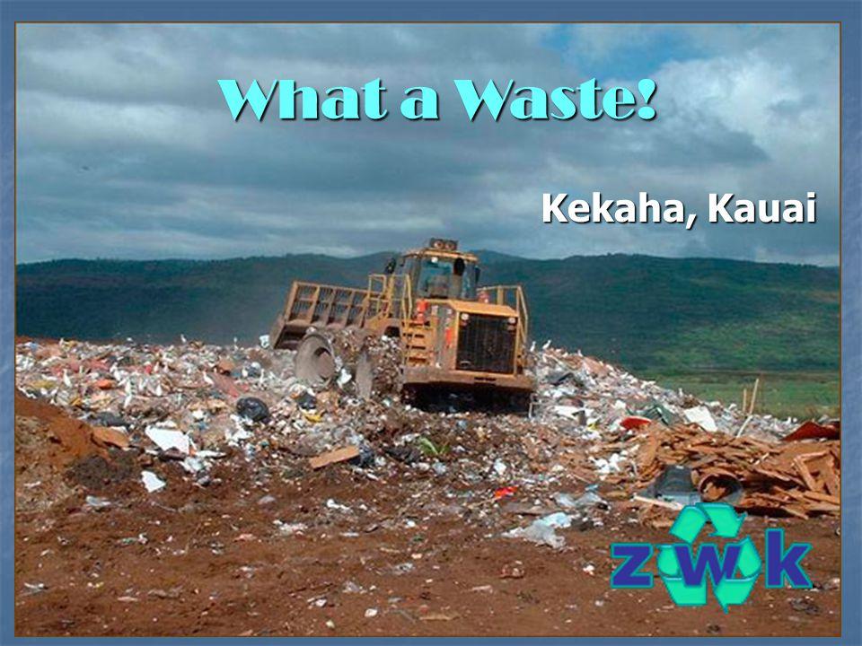 Kekaha, Kauai What a Waste!