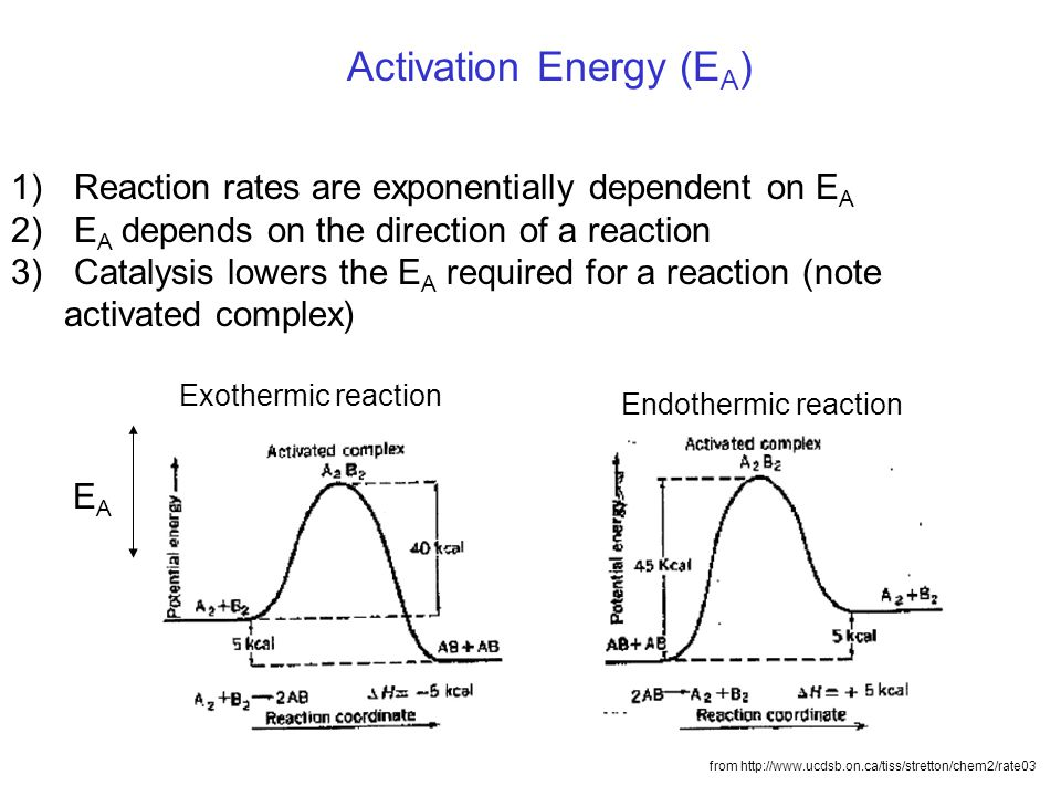 from http://www.ucdsb.on.ca/tiss/stretton/chem2/rate03 Exothermic reaction Endothermic reaction EAEA Activation Energy (E A ) 1) Reaction rates are ex