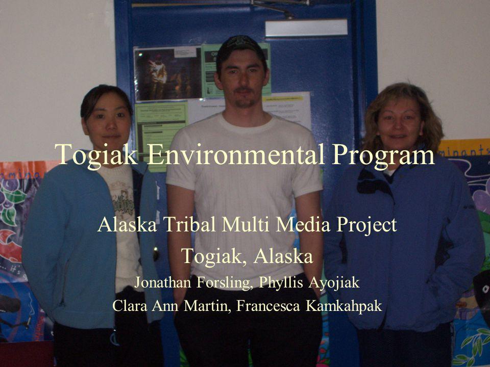 Togiak Environmental Program Alaska Tribal Multi Media Project Togiak, Alaska Jonathan Forsling, Phyllis Ayojiak Clara Ann Martin, Francesca Kamkahpak