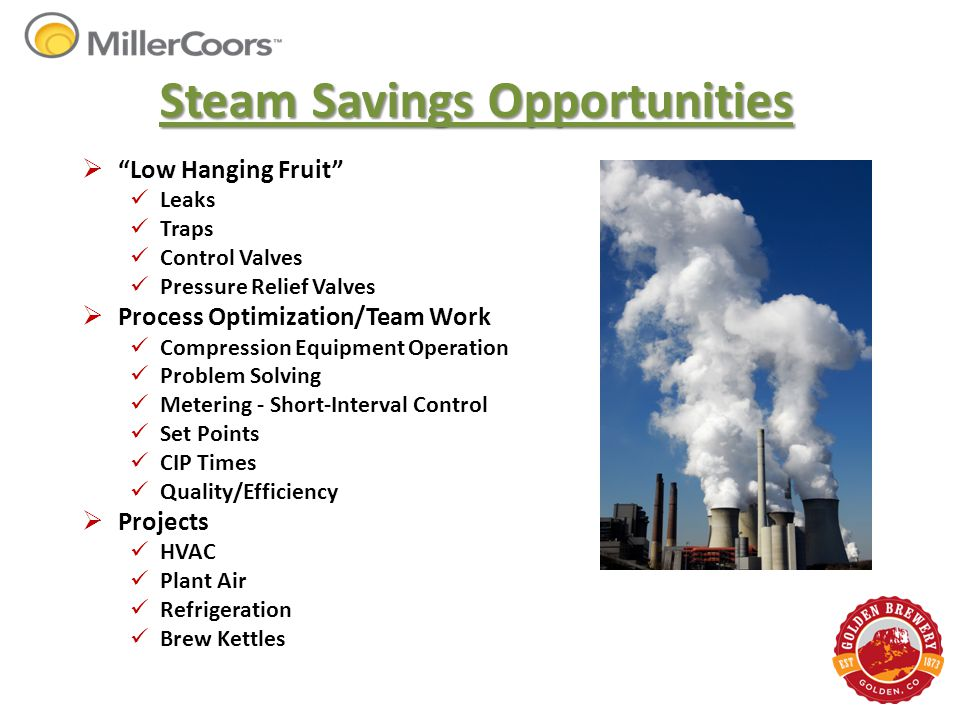 "Steam Savings Opportunities  ""Low Hanging Fruit"" Leaks Traps Control Valves Pressure Relief Valves  Process Optimization/Team Work Compression Equip"