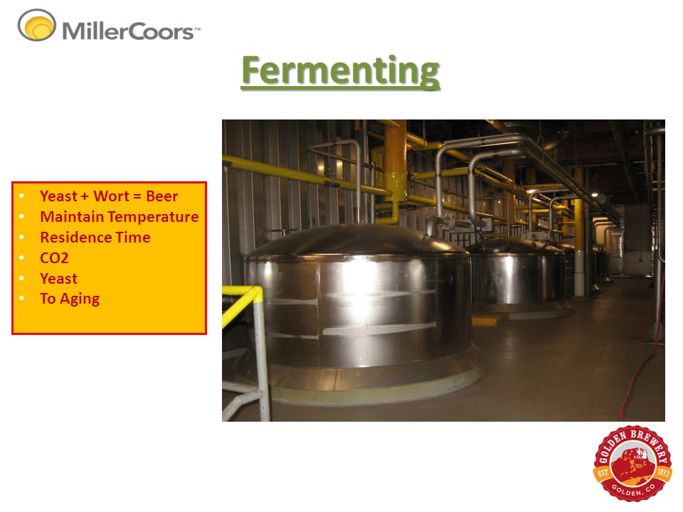 Fermenting Yeast + Wort = Beer Maintain Temperature Residence Time CO2 Yeast To Aging