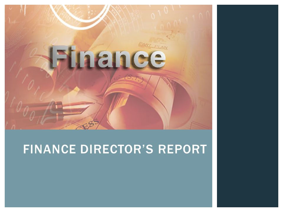 FINANCE DIRECTOR'S REPORT