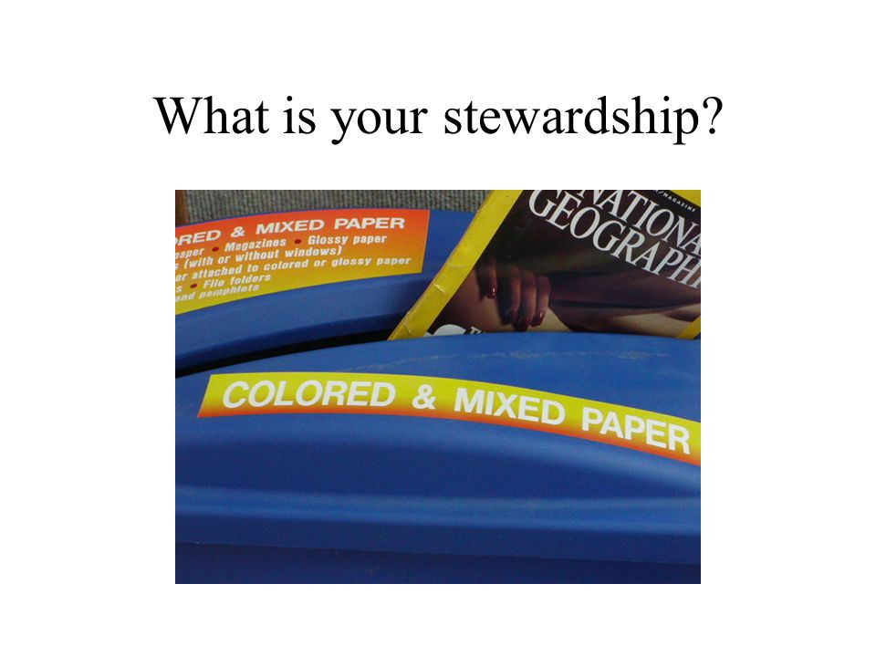 What is your stewardship?