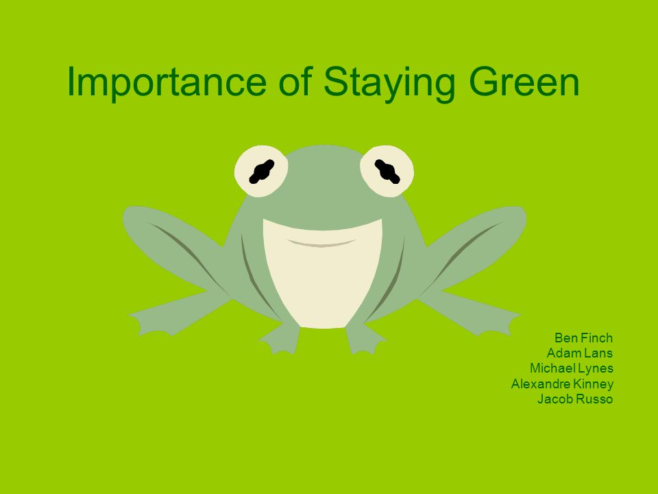 Importance of Staying Green Ben Finch Adam Lans Michael Lynes Alexandre Kinney Jacob Russo