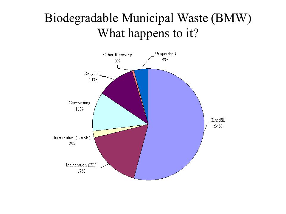 Biodegradable Municipal Waste (BMW) What happens to it