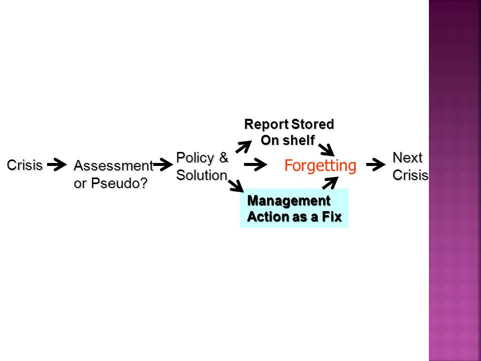 Policy & Solution Crisis Management Action as a Fix Assessment or Pseudo.