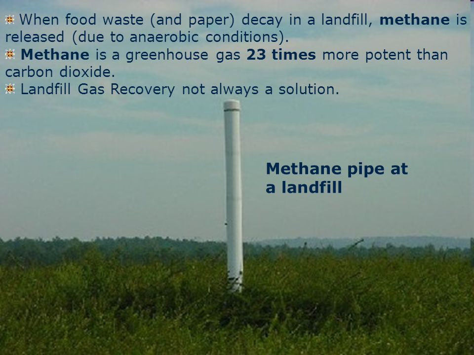 The Climate Change Connection When food waste (and paper) decay in a landfill, methane is released (due to anaerobic conditions).
