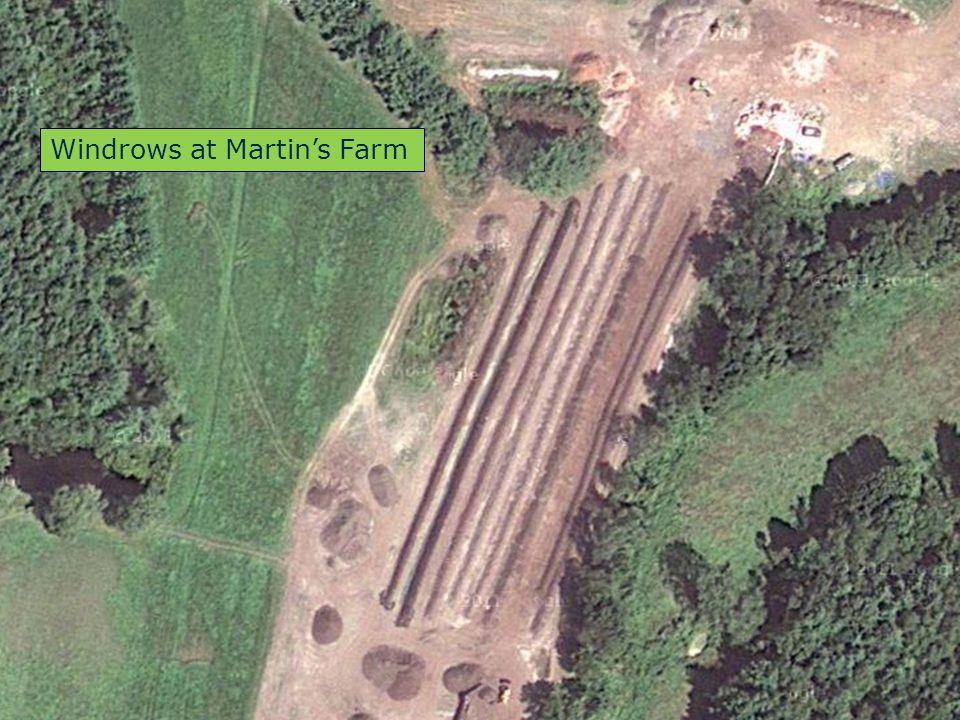 Windrows at Martin's Farm