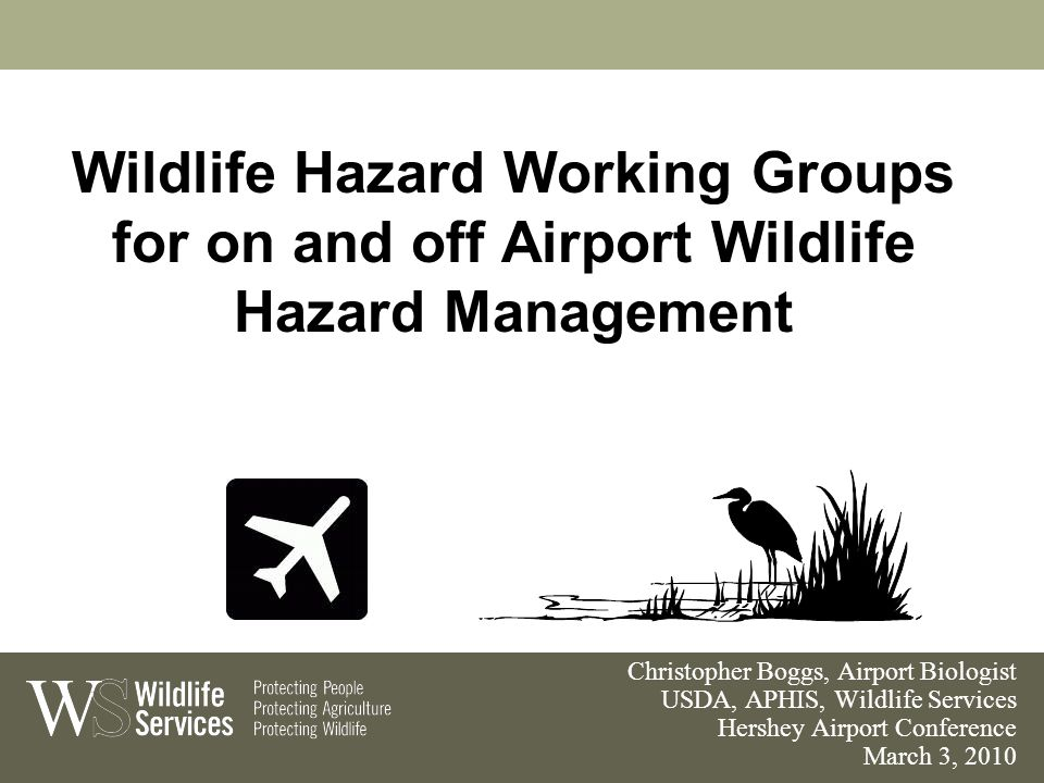 Wildlife Hazard Working Groups for on and off Airport Wildlife Hazard Management Christopher Boggs, Airport Biologist USDA, APHIS, Wildlife Services Hershey Airport Conference March 3, 2010