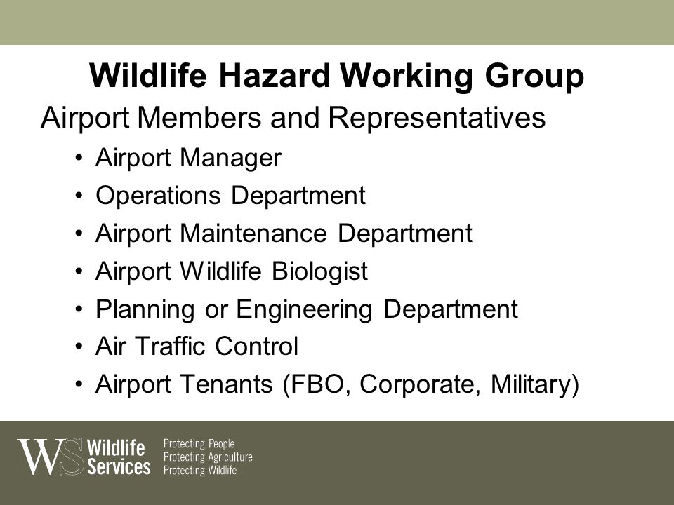 Wildlife Hazard Working Group Airport Members and Representatives Airport Manager Operations Department Airport Maintenance Department Airport Wildlife Biologist Planning or Engineering Department Air Traffic Control Airport Tenants (FBO, Corporate, Military)