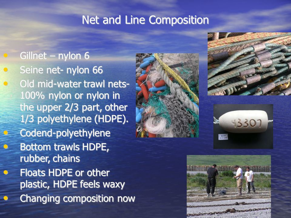 Net and Line Composition Gillnet – nylon 6 Gillnet – nylon 6 Seine net- nylon 66 Seine net- nylon 66 Old mid-water trawl nets- 100% nylon or nylon in the upper 2/3 part, other 1/3 polyethylene (HDPE).