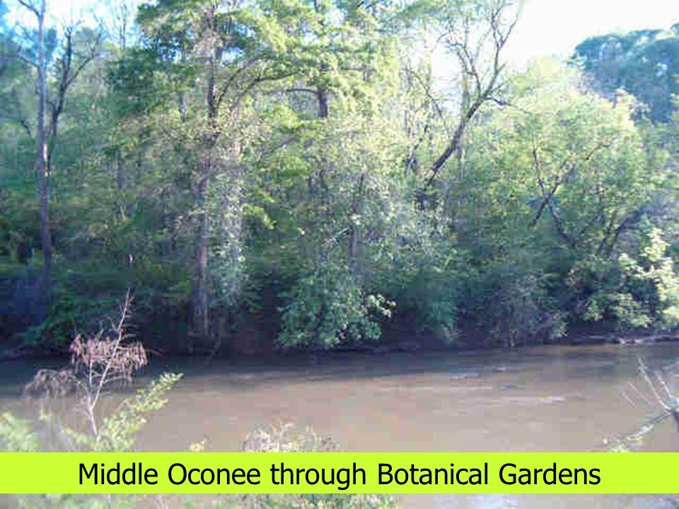 Middle Oconee through Botanical Gardens