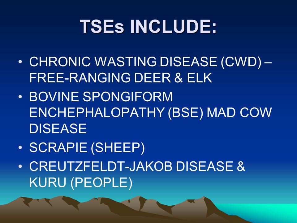 TSEs INCLUDE: CHRONIC WASTING DISEASE (CWD) – FREE-RANGING DEER & ELK BOVINE SPONGIFORM ENCHEPHALOPATHY (BSE) MAD COW DISEASE SCRAPIE (SHEEP) CREUTZFELDT-JAKOB DISEASE & KURU (PEOPLE)