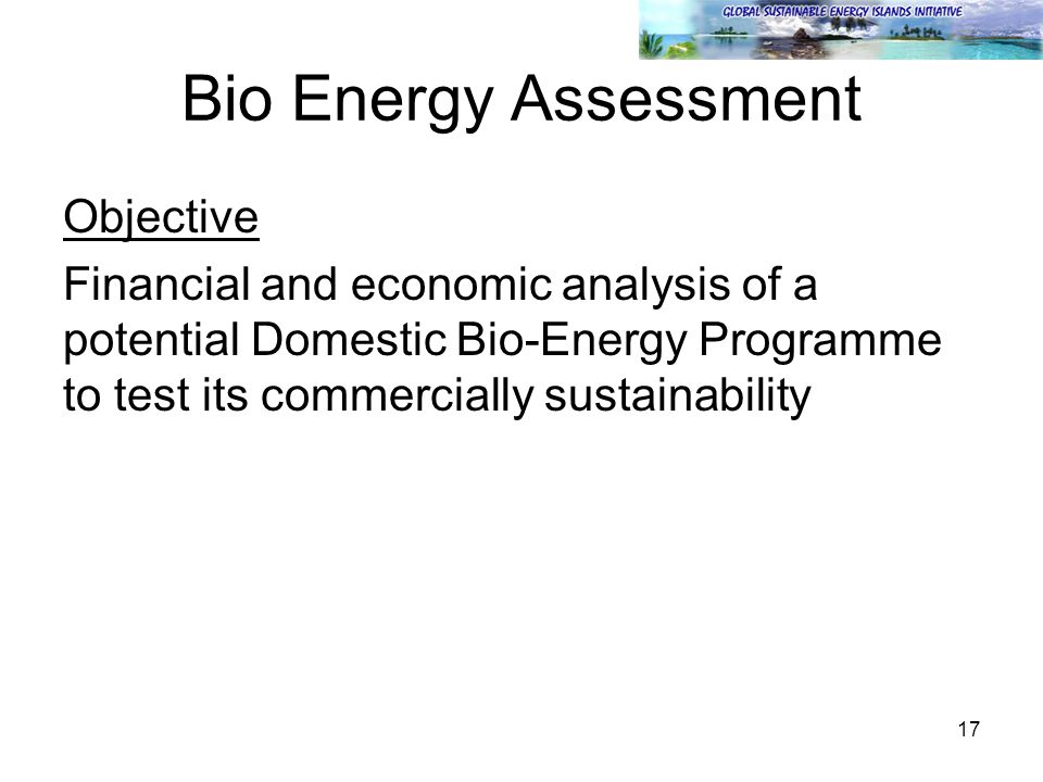 17 Bio Energy Assessment Objective Financial and economic analysis of a potential Domestic Bio-Energy Programme to test its commercially sustainabilit
