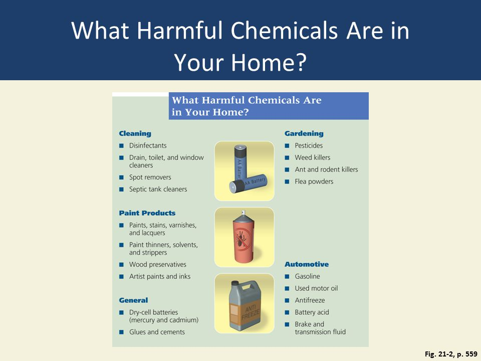 What Harmful Chemicals Are in Your Home Fig. 21-2, p. 559