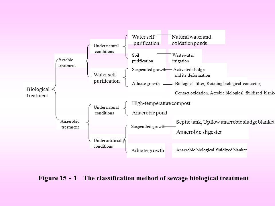 Figure 15 - 1 The classification method of sewage biological treatment Biological treatment Aerobic treatment Anaerobic treatment Under natural condit