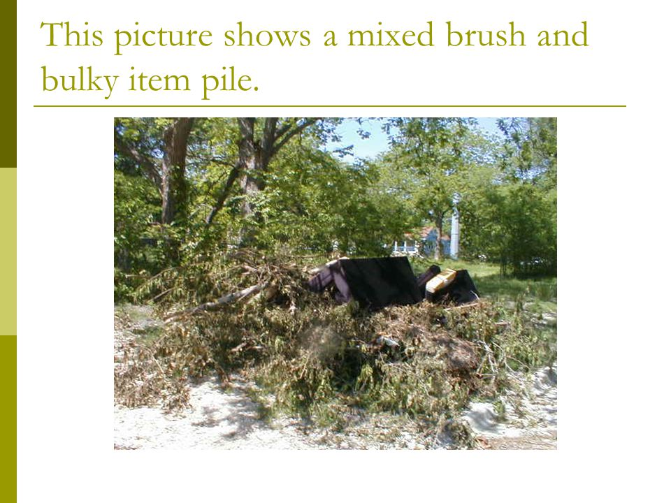 This picture shows a mixed brush and bulky item pile.