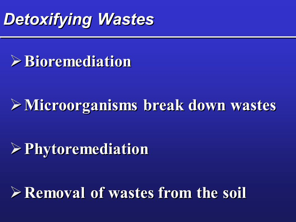 Detoxifying Wastes  Bioremediation  Microorganisms break down wastes  Phytoremediation  Removal of wastes from the soil
