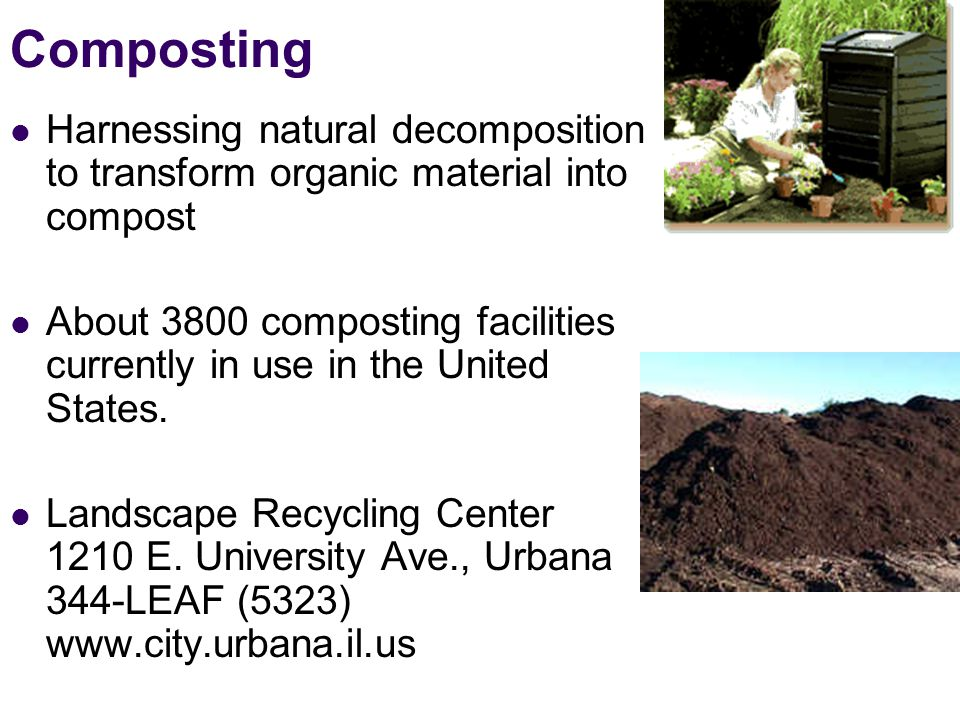 Composting Harnessing natural decomposition to transform organic material into compost About 3800 composting facilities currently in use in the United States.