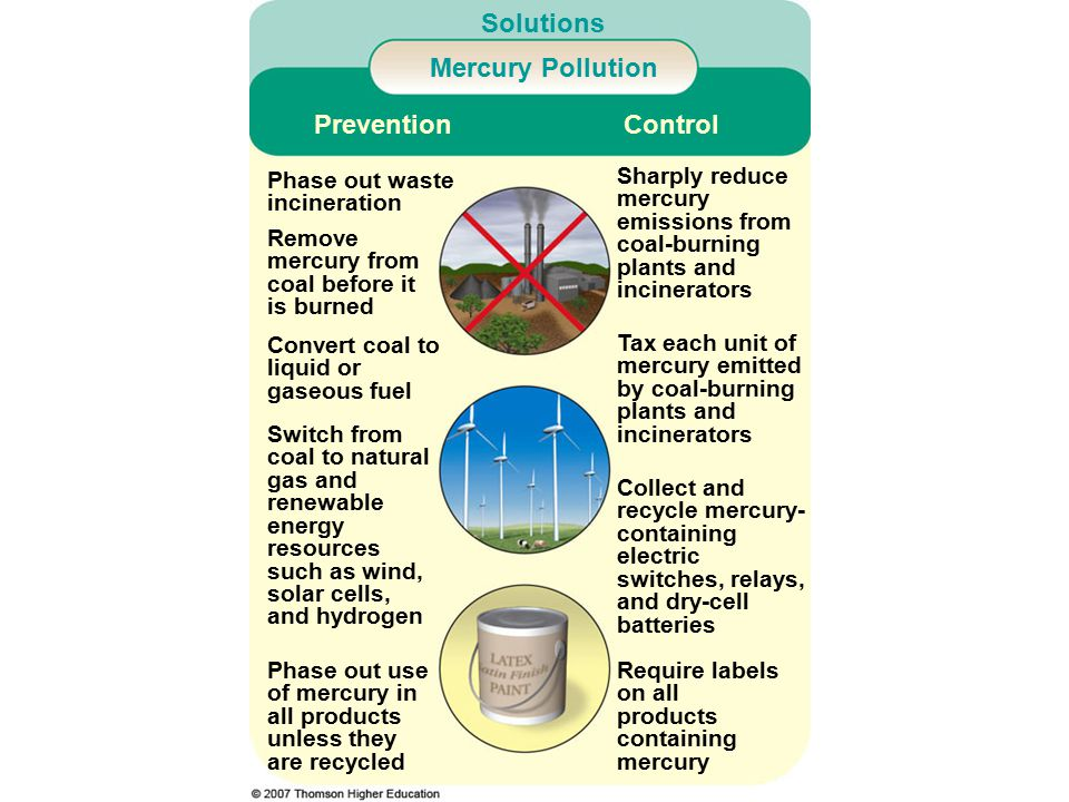 Solutions Mercury Pollution Phase out use of mercury in all products unless they are recycled Require labels on all products containing mercury Switch from coal to natural gas and renewable energy resources such as wind, solar cells, and hydrogen Convert coal to liquid or gaseous fuel Collect and recycle mercury- containing electric switches, relays, and dry-cell batteries Tax each unit of mercury emitted by coal-burning plants and incinerators Sharply reduce mercury emissions from coal-burning plants and incinerators PreventionControl Remove mercury from coal before it is burned Phase out waste incineration