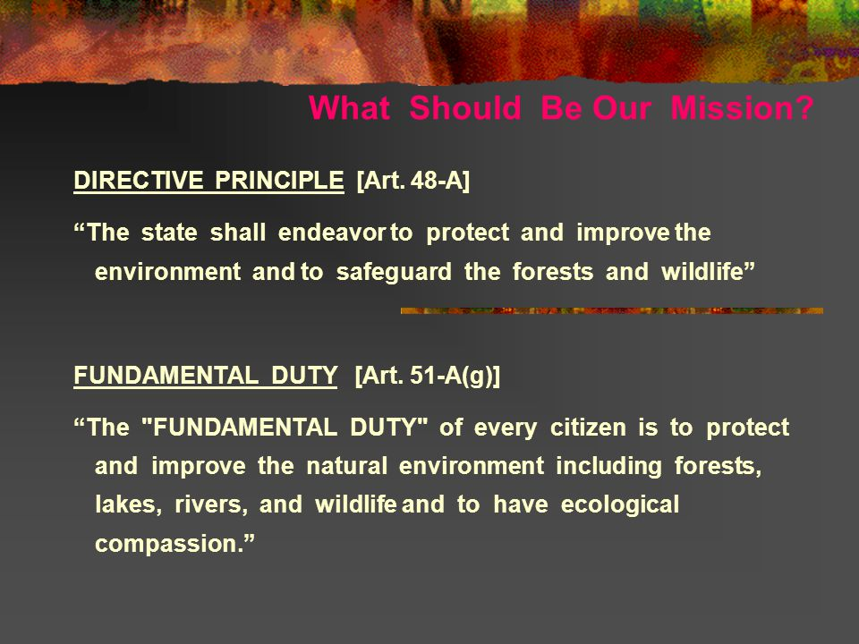 What Should Be Our Mission. DIRECTIVE PRINCIPLE [Art.