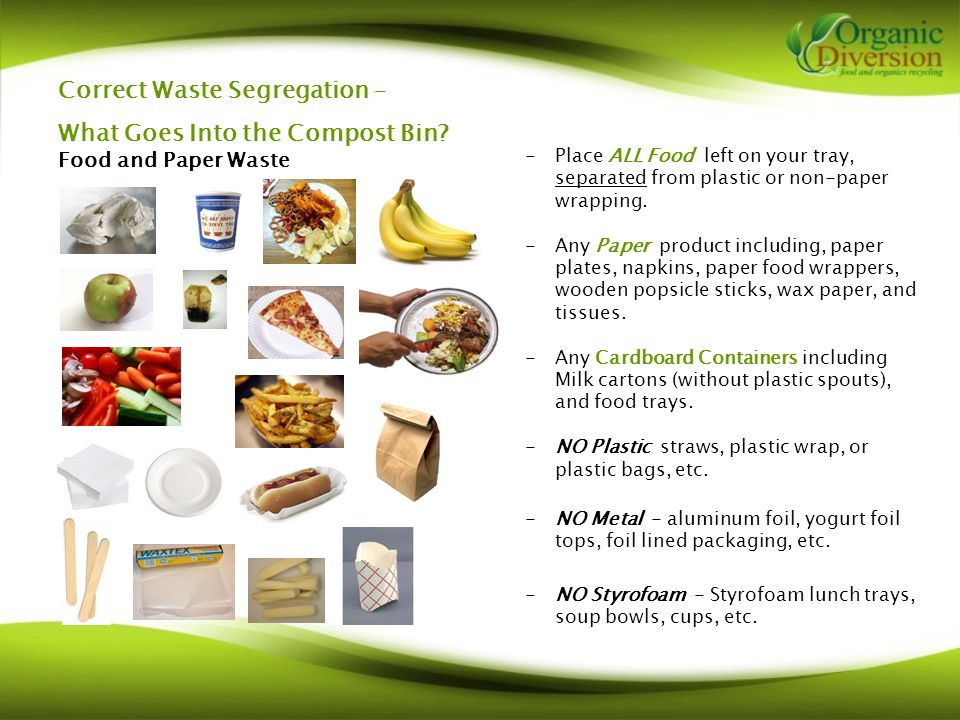 Correct Waste Segregation – What Goes Into the Compost Bin.