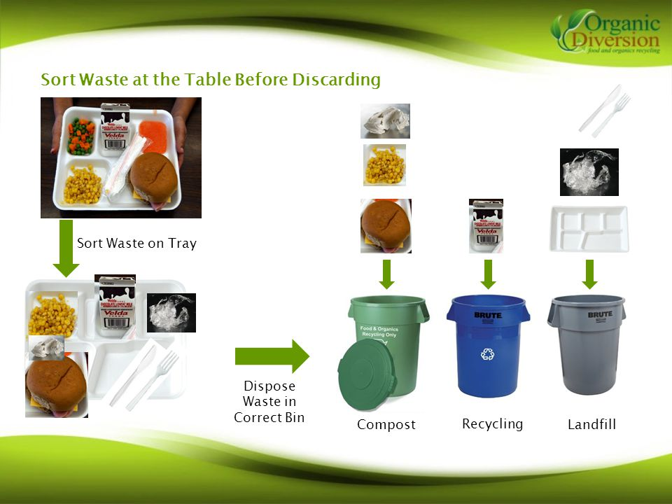 Sort Waste at the Table Before Discarding Compost Recycling Landfill Dispose Waste in Correct Bin Sort Waste on Tray