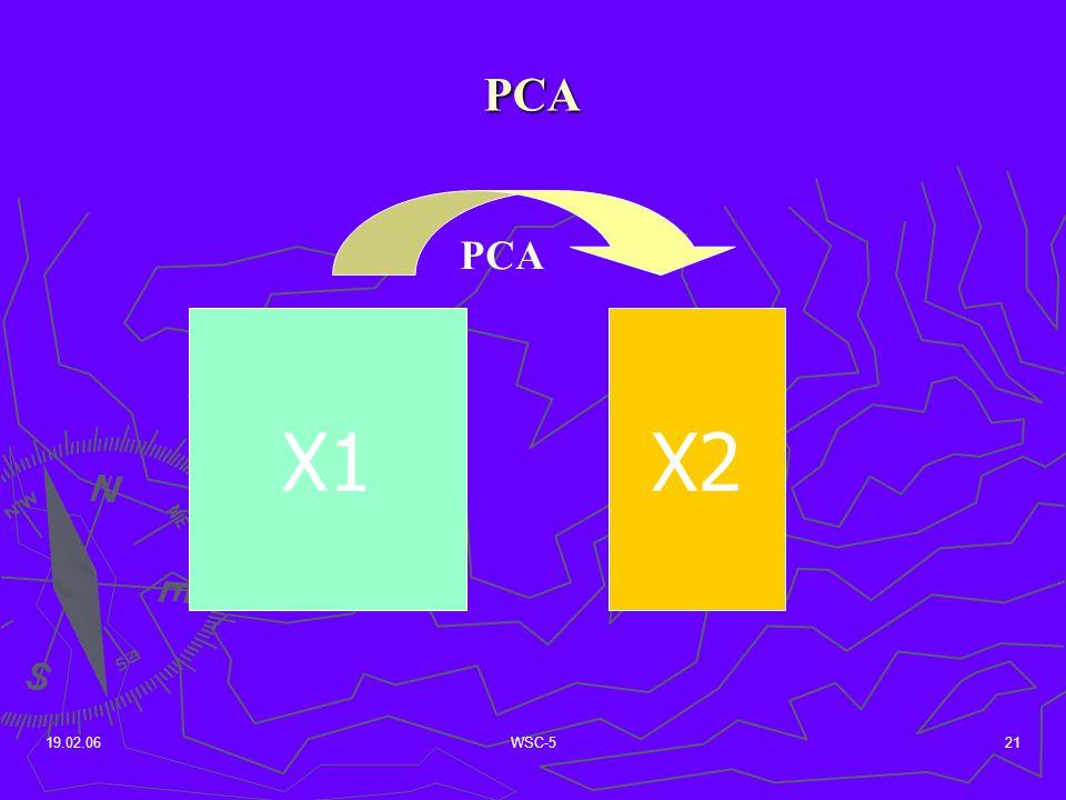 19.02.06WSC-521 PCA X1X2 PCA