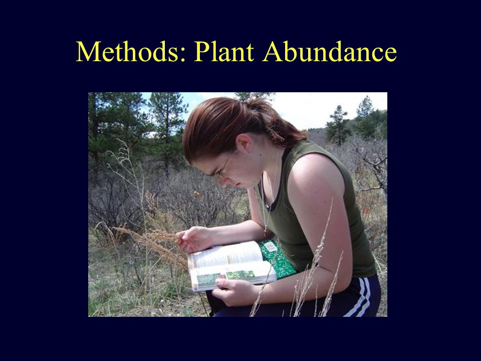 Methods: Plant Abundance