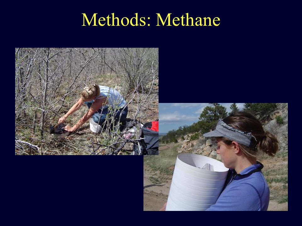 Methods: Methane