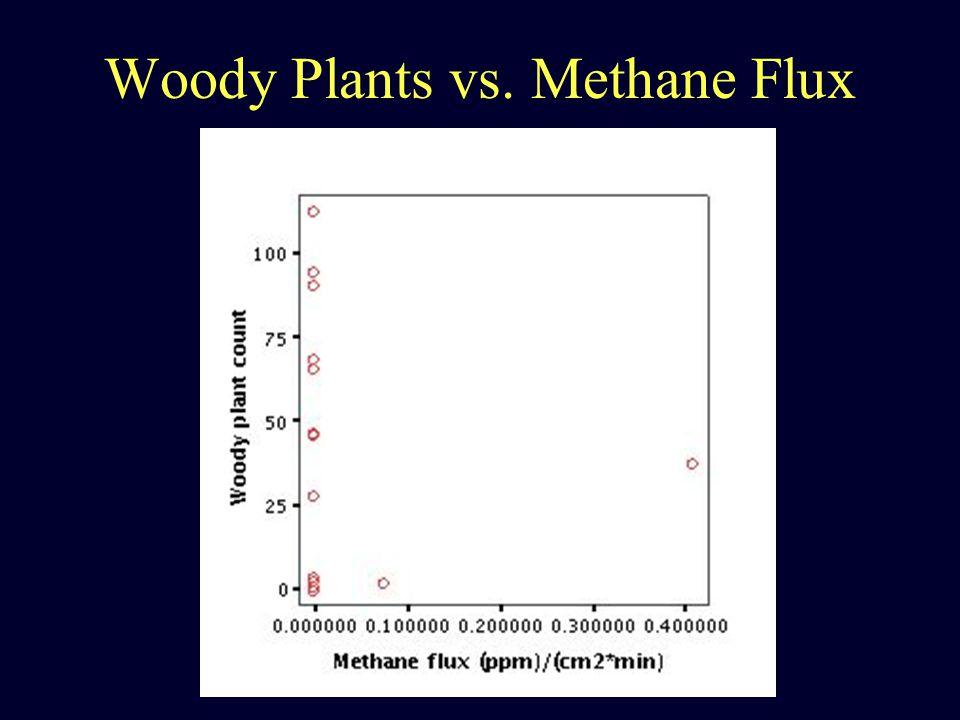 Woody Plants vs. Methane Flux