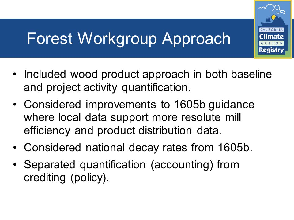 Forest Workgroup Approach Included wood product approach in both baseline and project activity quantification.