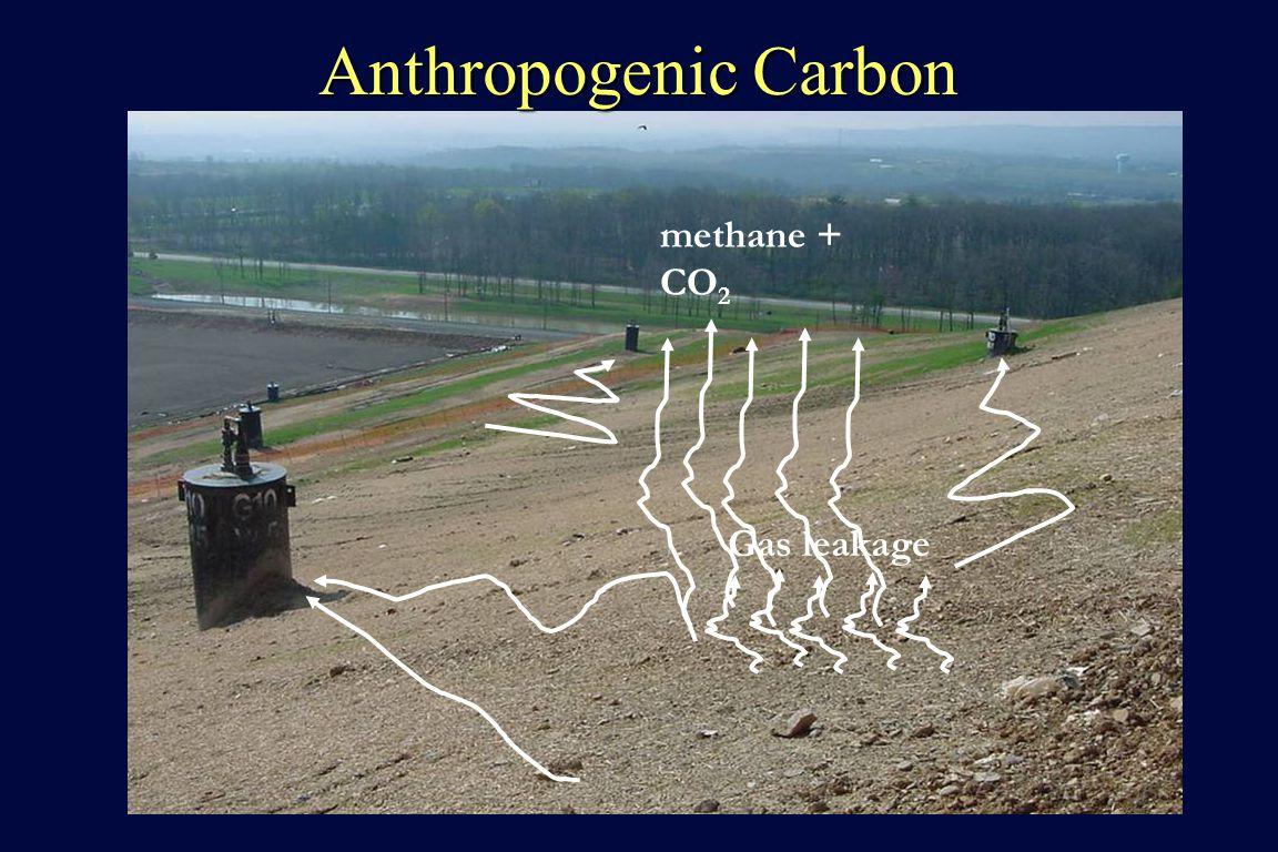 Anthropogenic Carbon methane + CO 2 Gas leakage
