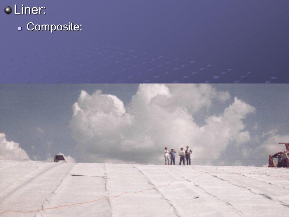 Liner: Composite: Composite: