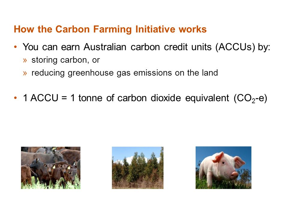 How the Carbon Farming Initiative works You can earn Australian carbon credit units (ACCUs) by: »storing carbon, or »reducing greenhouse gas emissions