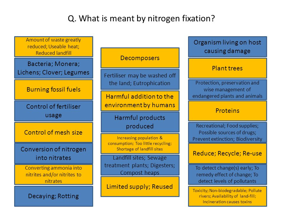 Q. What is meant by nitrogen fixation.